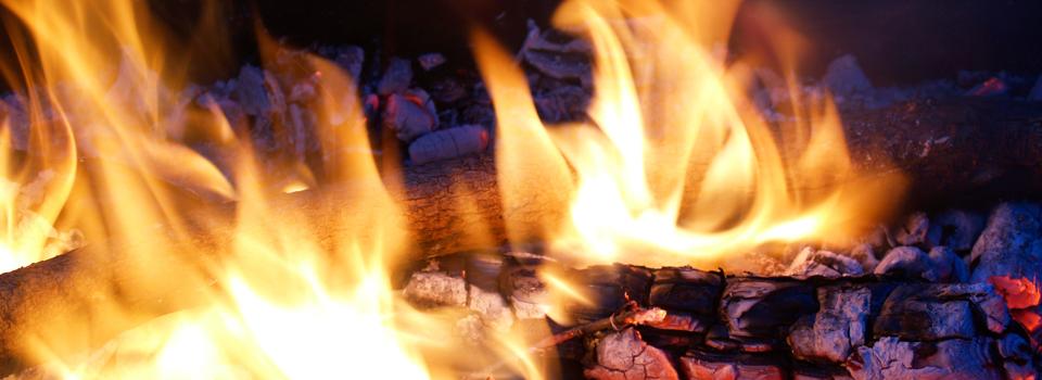 FirewoodDeliveryService1
